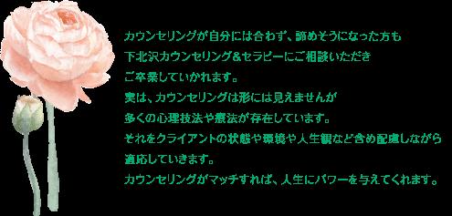 tokyo_setagaya_shimokitszawa_counseling_therapy_coaching332