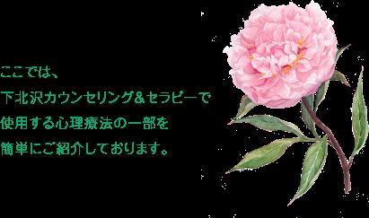 tokyo_setagaya_shimokitszawa_counseling_therapy_coaching338