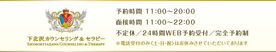 tokyo_setagaya_shimokitszawa_counseling_therapy_coaching368