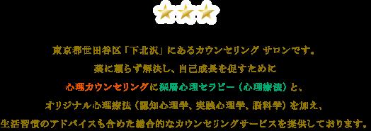 tokyo_setagaya_shimokitszawa_counseling_therapy_coaching371
