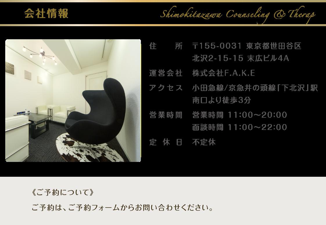 tokyo_setagaya_shimokitszawa_counseling_therapy_coaching384